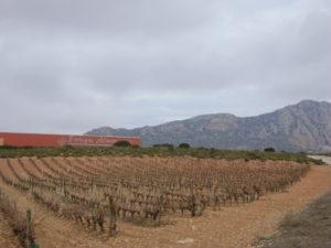 villamanrique-2010-394