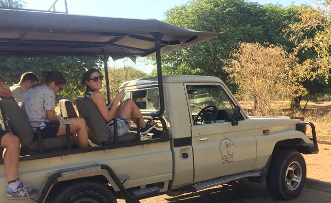 Consejos antes de ir a Botsuana