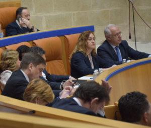 Bancos del Gobierno y del PP, durante el pleno del 19 de abril. Foto de Miguel Herreros