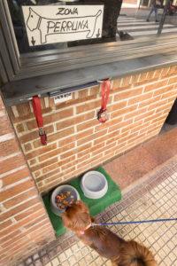 Bebederos para perros a la entrada del bar Beitia de la calle Somosierra de Logroño. Foto de Justo Rodríguez